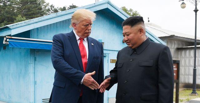 Donald Trump och Kim Jong Un tidigare i år. Susan Walsh / TT NYHETSBYRÅN