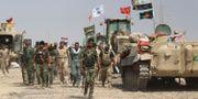Arkivbild: Irak. AHMAD AL-RUBAYE / AFP