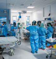 Arkivbild, intensivvårdsavdelning på Södertälje sjukhus Staffan Löwstedt/SvD/TT / TT NYHETSBYRÅN