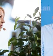 Annie Lööf och Stefan Löfven. TT