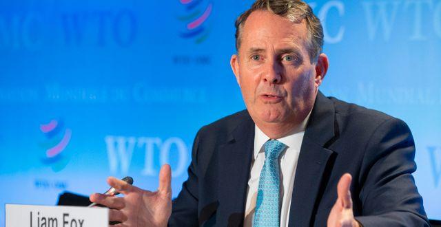Den tidigare handelsministern i Storbritannien Liam Fox.  Salvatore Di Nolfi / TT NYHETSBYRÅN