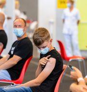 En tolvårig pojke i Estland som har vaccinerat sig mot covid-19. Raul Mee / TT NYHETSBYRÅN