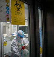 Arkivbild, vårdpersonal i Hubei-provinsen i Kina 11 januari.  Mu Yu / TT NYHETSBYRÅN