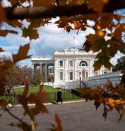 En bild på Vita huset tagen utifrån.  Evan Vucci / TT NYHETSBYRÅN