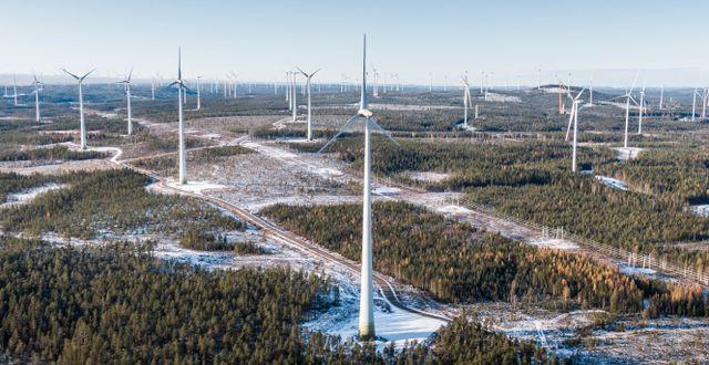 Arkivbild på vindkraft.  Magnus Hjalmarson Neideman/SvD/TT / TT NYHETSBYRÅN