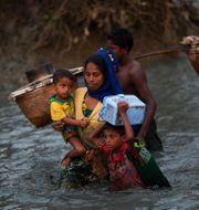 Rohingyer på flykt från Myanmar till Bangladesh.  Bernat Armangue / TT NYHETSBYRÅN
