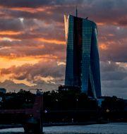 Europeiska centralbanken i Frankfurt. Michael Probst / TT NYHETSBYRÅN