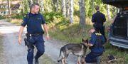 Arkivbild: Polis letar efter rymlingen utanför Laxå den 12 juli. Jeppe Gustafsson/TT / TT NYHETSBYRÅN