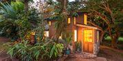 Högst två personer åt gången kan bo i den romantiska stugan från 1930-talet. Airbnb