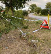Två personer dog av sina skador efter att fyra cyklister blivit påkörda på Öland.  Helmut Petersson/TT / TT NYHETSBYRÅN