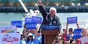 Bernie Sanders på kampanjmöte i Kalifornien 2016. FREDERIC J. BROWN / AFP