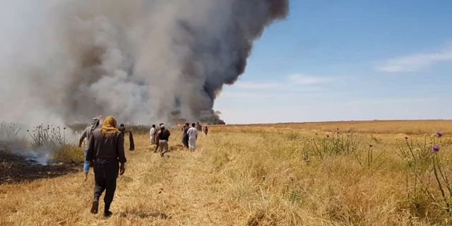 Ett fält i brand i Raqqa i slutet av maj.  TT NYHETSBYRÅN