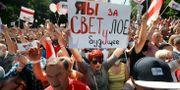 Demonstranter som stöttar Svetlana Tikhanovskaja i staden Baranovichi.  Sergei Grits / TT NYHETSBYRÅN