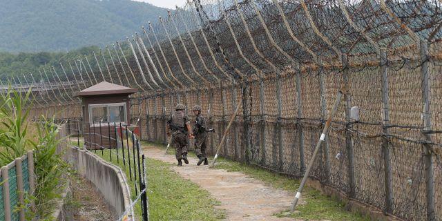 Demilitariserade zonen. Arkivbild. Ahn Young-joon / TT NYHETSBYRÅN