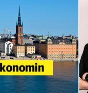 Daniella Waldfogel, näringspolitisk chef, Stockholms Handelskammare. Mostphotos/Stockholms Handelskammare