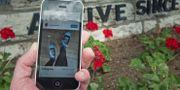 Fotot från nyhetsbyrån AFP visar Mannings inlägg på instagram, utanför arméfängelset Fort Leavenworth NICHOLAS KAMM / AFP