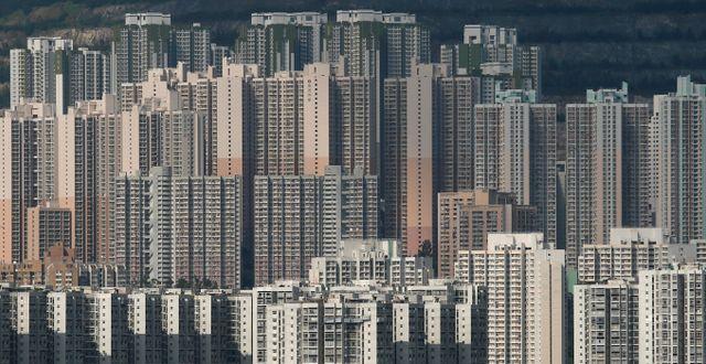 Illustrationsbild. Hongkong.  Bobby Yip / TT NYHETSBYRÅN