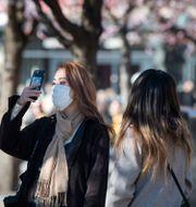 Kvinna med ansiktsmask i Kungsträdgården i Stockholm i mars. Jessica Gow/TT / TT NYHETSBYRÅN