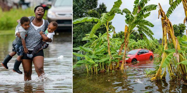 Bilder från Louisiana. TT.