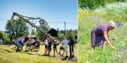 Bilder från ett ovanligt litet midsommarfirande i Dalarna.  TT