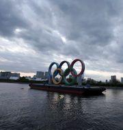 OS-ringarna flyter i Odaiba i Tokyo Eugene Hoshiko / TT NYHETSBYRÅN