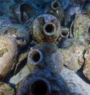Vaserna från fartyget är i utmärkt skick. Ionian Aquarium