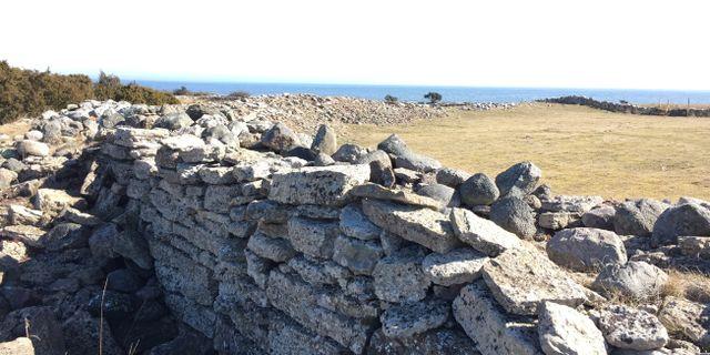 Del av den västra delen av muren runt Sandby Borg. Bairuilong/Wikipedia