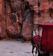 Petra i Jordanien.  Nariman El-Mofty / TT NYHETSBYRÅN