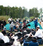 Pilgrimerna på gränsen. TT NYHETSBYRÅN