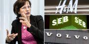 Tredje AP-fondens vd Kerstin Hessius. Arkivbilder. TT
