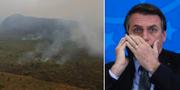 Jair Bolsonaro t.h. TT