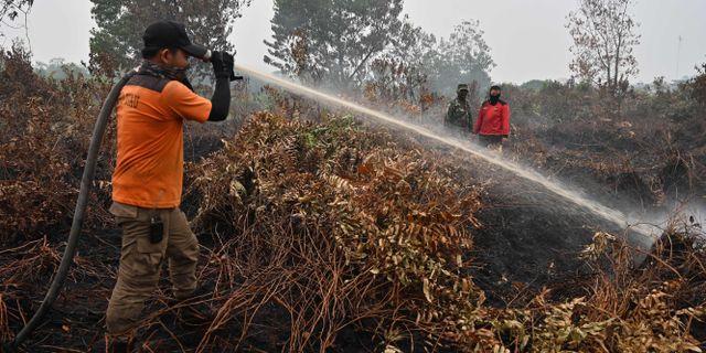 Brandmän bekämpar bränder i Indonesien. ADEK BERRY / AFP