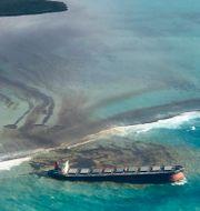 Fartyget MV Wakashio, som gått på grund utanför Mauritius kust.  Eric Villars / TT NYHETSBYRÅN