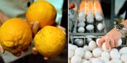 Illustrationsbilder. Ekologiska citroner och ägg. TT