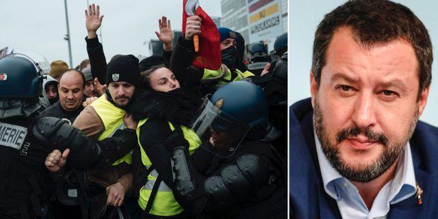 Gula västarna/Salvini. TT