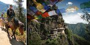 Bhutans främsta sevärdhet är det unika klostret Tigernästet. Turister kan rida på åsnor på vägen upp. Tripadvisor / Eagle Tours