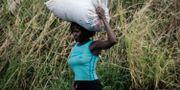 En kvinna bär på en påse med ris i Beira, Moçambique.  YASUYOSHI CHIBA / AFP