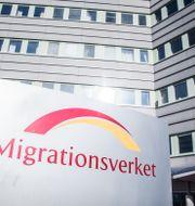 Migrationsverket i Solna.  Adam Wrafter/SvD/TT / TT NYHETSBYRÅN