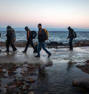 Afghanska flyktingar på en strand i Turkiet.  Santi Palacios / TT / NTB Scanpix