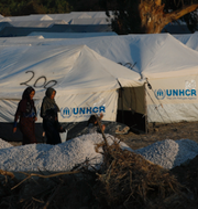 Flyktingar på Lesbos och Tomas Rolén. TT