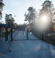 Försvarets radioanstalt. Stina Stjernkvist/TT / TT NYHETSBYRÅN
