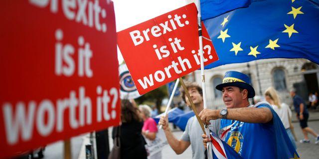 Demonstration utanför Westminster. HENRY NICHOLLS / TT NYHETSBYRÅN