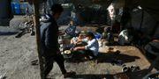 Migranter lagar mat i ett flyktingläger i Vucijak nära Bihac i Bosnien-Hercegovina. ANTONIO BRONIC / TT NYHETSBYRÅN