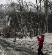 En man tar bilder av träd som krossats när en lavin dragit fram. PHILIPPE DESMAZES / AFP