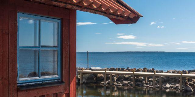 Arkivbild.  Henrik Holmberg / TT / TT NYHETSBYRÅN