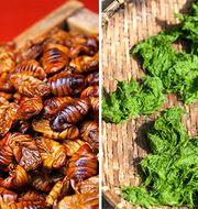 Enligt en ny Sifoundersökning kan många tänka sig att äta insekter och alger i framtiden. Foto: Colourbox