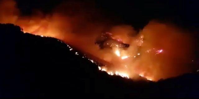 Skogsbrand på Gran Canaria. CARLA RODRIGUEZ / TT NYHETSBYRÅN
