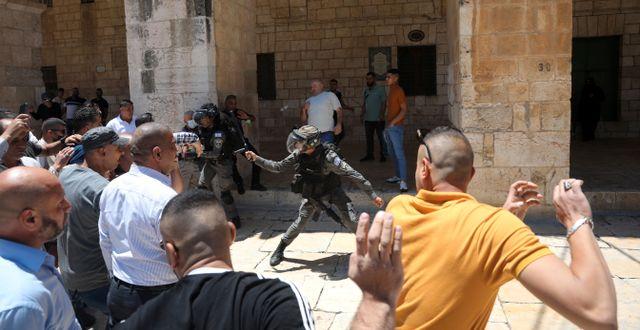 Israelisk gränspolis använder batonger för att förhindra muslimer från att samlas för fredagsbönen i al-aqsamoskén i Jerusalem. 14 maj.  Mahmoud Illean / TT NYHETSBYRÅN