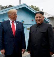 Donald Trump och Kim Jong-Un. Susan Walsh / TT NYHETSBYRÅN