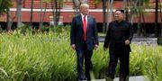 Trump och Kim vid deras första möte. Jonathan Ernst / TT NYHETSBYRÅN